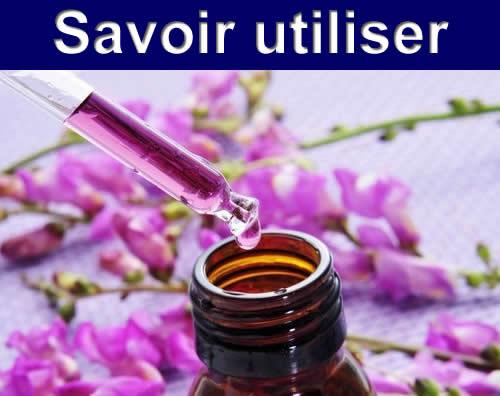 Niveau 1 : Savoir utiliser les Fleurs de Bach   04 et 05 Juillet 2020 – Saint Malo – Bretagne