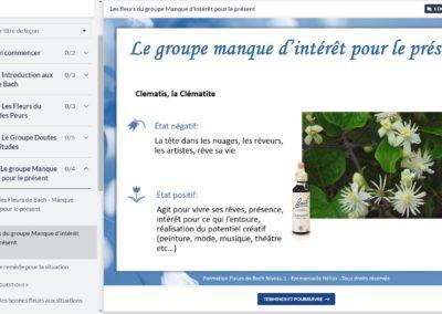 Fleurs-de-bach-me-former-niveau-1-video-groupe-fleurs