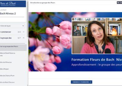 Fleurs-de-bach-me-former-niveau-2-video-groupe-fleurs