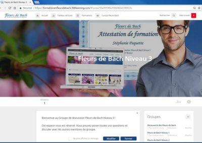 Groupe_de_discussion_fleurs_de_bach