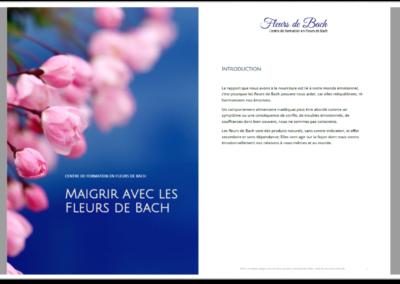 Livret Maigrir avec les Fleurs de Bach