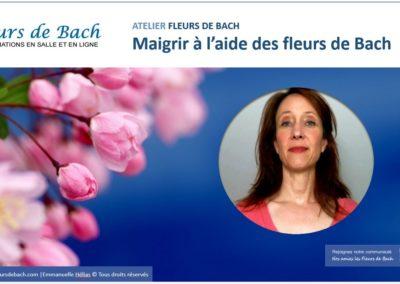 cover_formation_maigrir_fleurs_de_bach