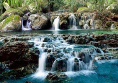 rock-water- eau-de-roche-fleur-de-bach