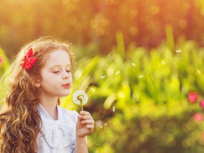 Psychanalyse et fleurs de Bac
