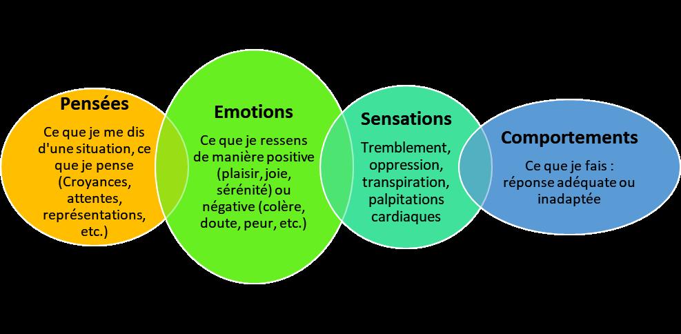 Le Journal des Fleurs de Bach sensations pensées émotions comportements