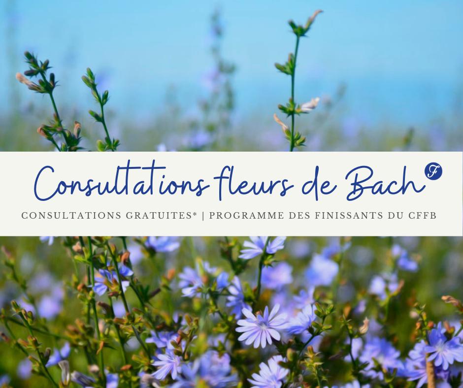Consultations Gratuites en Fleurs de Bach